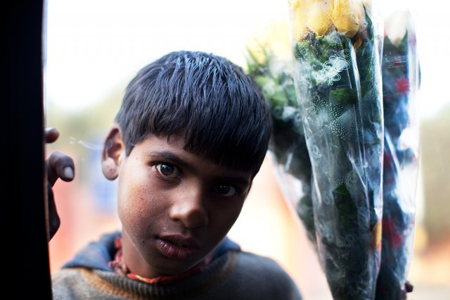 through the car window - the flower seller