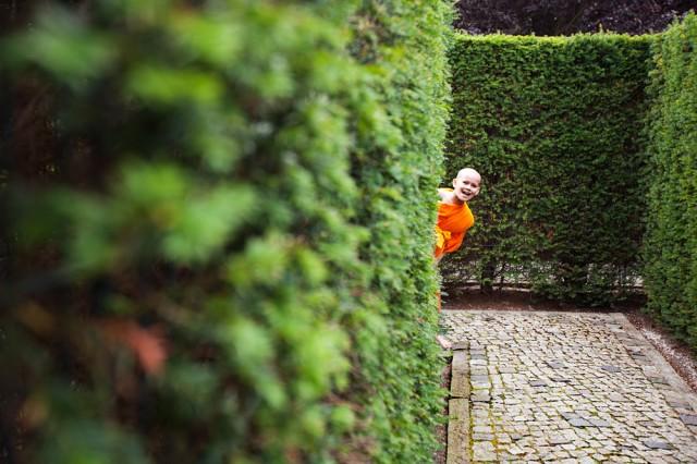 monk in a maze :: 1
