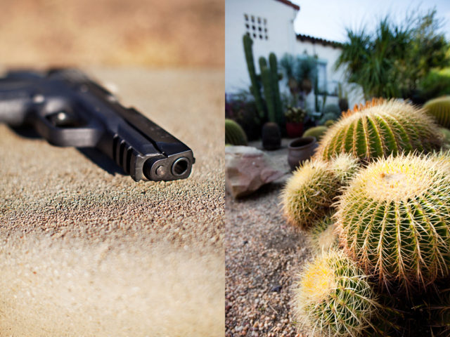 I kicked him where it hurt and the gun landed near the cactus. I ran to the car and spe