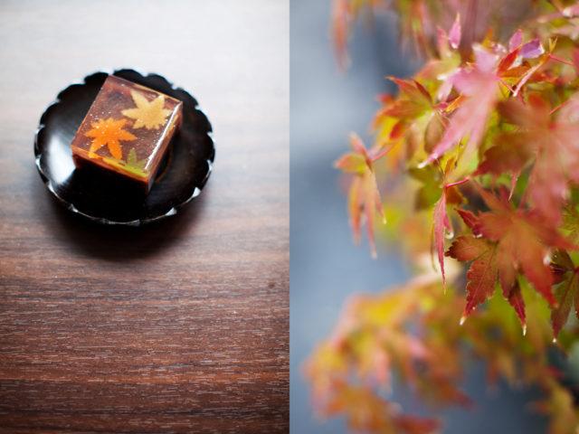 autumn :: 2