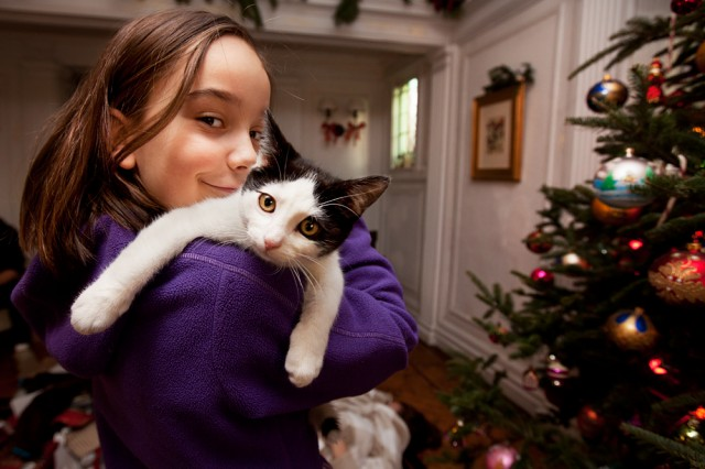 Coco's favourite plaything on Christmas morning - Moo, a rescue kitten from the hurricane