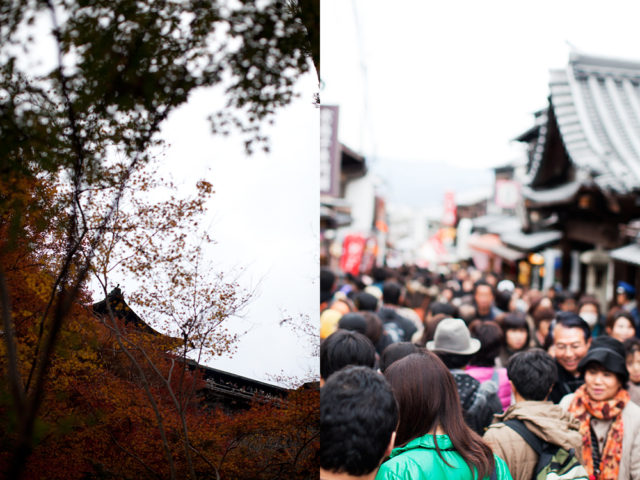 crowded Kyoto - last chance to see the autumn leaves :: 1