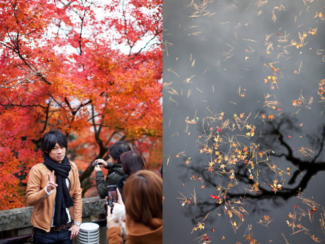 crowded Kyoto - last chance to see the autumn leaves :: 2