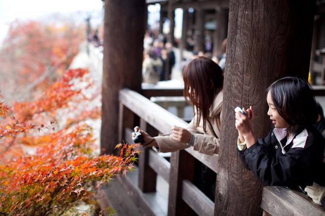 crowded Kyoto - last chance to see the autumn leaves :: 3