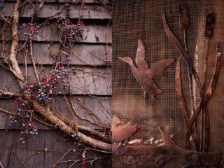 17. bird on a branch
