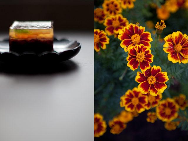 20. autumn