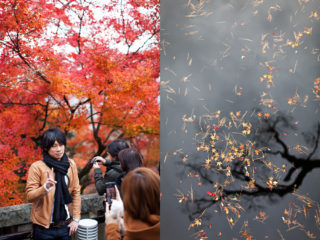 24. crowded Kyoto - last chance to see the autumn leaves