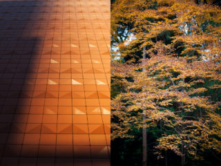 27. from Tokyo's man-made mountains to Kyoto's high-rise