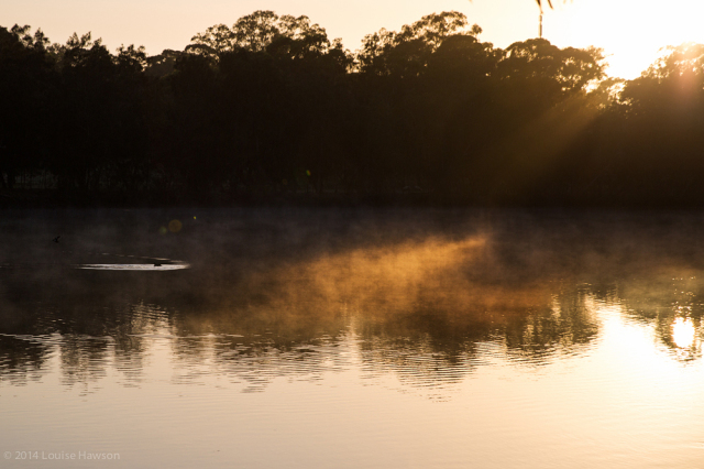 daybreak on the Georges River :: 1